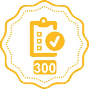 Product description 300